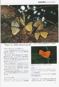 Hinoharu-1.jpg