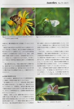 Hinoharu-2.jpg
